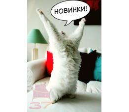 Новинки!!!) Скорее забегай!))